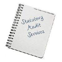 Statutory Audit Services