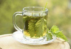 Nettle Buransh Infusion Green Tea