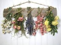 Decorative Dry Flowers