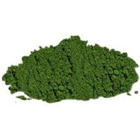 Dried Spinach Powder