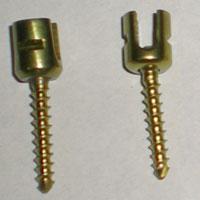 Lateral Mass Screws