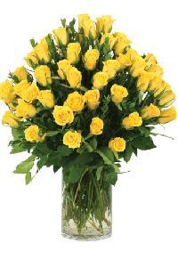 WARM WISHES flowers