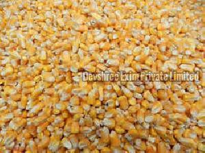 Animal Feed Yellow Maize Seeds