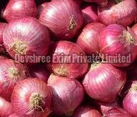 Fresh Red Onion Supplier Nashik