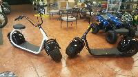 SSR Motorsports SEEV-800 Electric Scooter