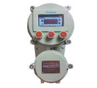 Flame Proof Process Controller