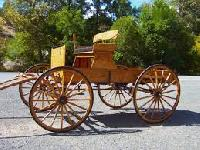 Horse Carriages And Wagon