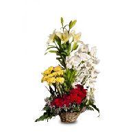 25 Mix Seasonal Flower Cane Basket