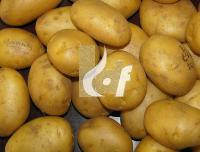 Atlantic Potato