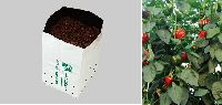 Cocopeat Opentop Growbags