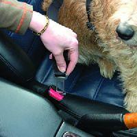 Animals Clix Car Safe