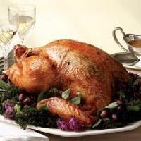 Turkeys Meat
