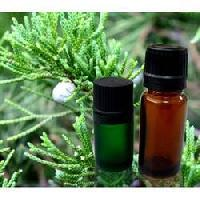 Cypress Oil - 100% Pure, Natural & Undiluted Oil