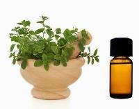 Marjoram Oil - 100% Pure, Natural & Undiluted Essential..