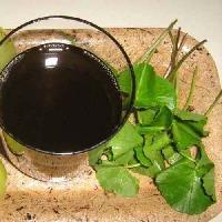 Pure Brahmi Oil