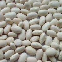 White Kidney Beans Extract
