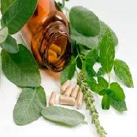 Anti Diabetic Herbal Medicine