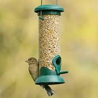 Bird Feeder Seeds