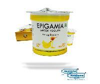 Epigamia Greek Yoghurt 90g Honey Banana,12 Pieces