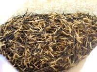 Marigold Plant Seed