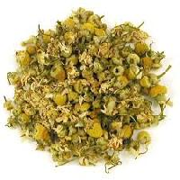 Chamomile Egyptian Tea