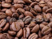 Dry Coffee Beans