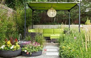 Terrace Gardening Consultant
