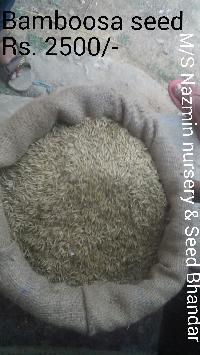 Bamboosa Seeds