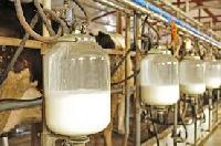 Standardized Milk