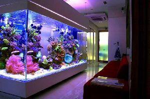 Designer Fish Aquariums
