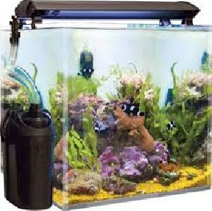 Filtered Fish Aquariums