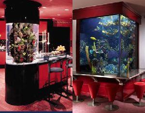 Fish Aquarium Customization Services