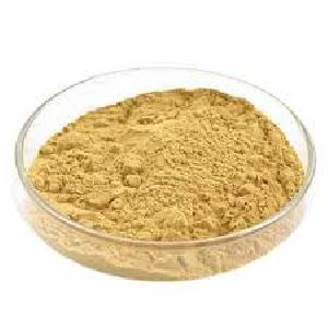 Ultra Filtered Yeast Extract Powder