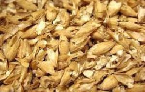 Sarvottam Barley Chunni Cattle Feed