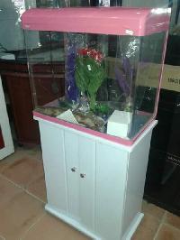 Imported Aquarium