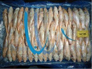 Fresh Yellow Croaker Fish