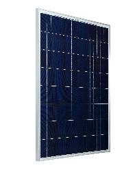 Bluebird Solar Polycrystalline PV Module 250 W