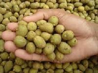 Kufri Jyoti Potato Seed