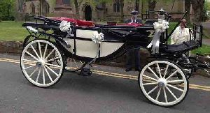 wedding horse carriage manufacture in india