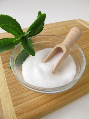 Stevia extract white powder Manufacturer, Exporters, Supplier India