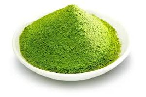 Stevia green powder Manufacturer, Exporters, Supplier india