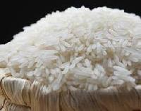 IR-520 Rice