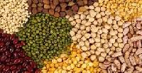 India Pulse And Beans