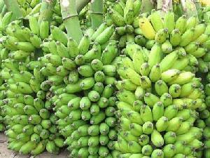 Poovan Banana