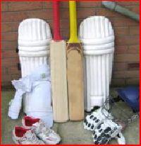 Plastic Cricket Set