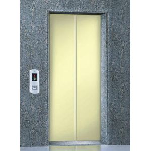 Stainless Steel Automatic Door Elevator