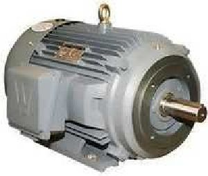 Electric Bare Motor