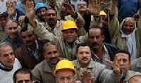 Factory Labour Consultancy Services