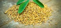 Fenugreek Seeds