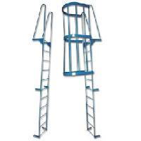 Fixed Walk Through Access Ladders